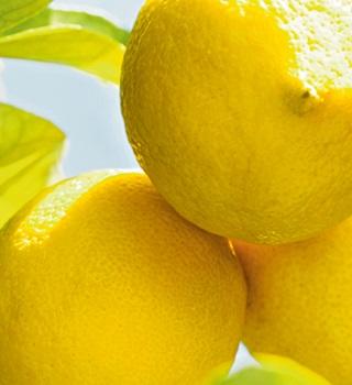 Weleda Citrus