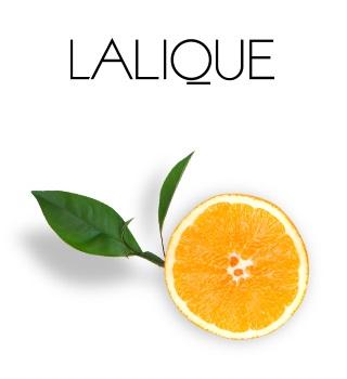 Lalique dès 40 € d'achat