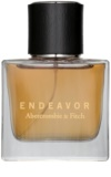 Abercrombie & Fitch Endeavor colonia para hombre 50 ml