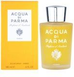 Acqua di Parma Ambra Raumspray 180 ml