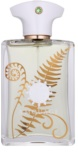 Amouage Bracken Eau de Parfum for Men 100 ml