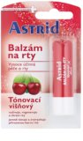 Astrid Lip Care balsam de buze colorat efect regenerator