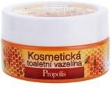 Bione Cosmetics Honey + Q10 козметичен вазелин