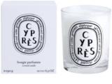 Diptyque Cypres vonná svíčka 190 g