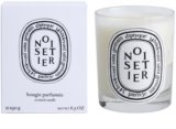 Diptyque Noisetier Scented Candle 190 g