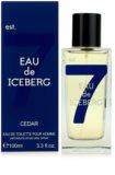 Iceberg Eau de Iceberg Cedar toaletní voda pro muže 100 ml