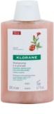 Klorane Grenade šampon pro barvené vlasy