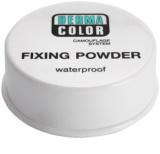 Kryolan Dermacolor Camouflage System Waterproof Setting Powder