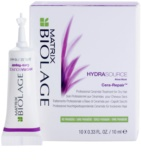 Matrix Biolage Hydra Source tratamiento capilar intenso para cabello seco
