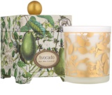 Michel Design Works Avocado Scented Candle 397 g in Glass Jar (65-80 Hours)