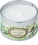 Michel Design Works Avocado vela perfumada  113 g en lata (20 Hours)