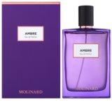 Molinard Ambre Eau de Parfum for Women 75 ml
