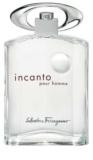 Salvatore Ferragamo Incanto Pour Homme toaletna voda za moške 100 ml