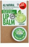 Sportique Wellness Heavenly Lime & Mint ajakbalzsam