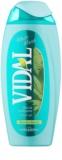 Vidal White Musk gel de ducha para mujer 250 ml