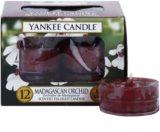 Yankee Candle Madagascan Orchid čajová svíčka 12 x 9,8 g