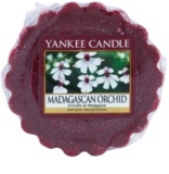 Yankee Candle Madagascan Orchid vosek za aroma lučko  22 g