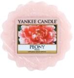 Yankee Candle Peony Wachs für Aromalampen 22 g