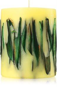 Acqua di Parma Tea Leaves dišeča sveča  900 g