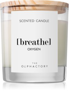 Ambientair Olphactory Oxygen vela perfumada (Breathe)