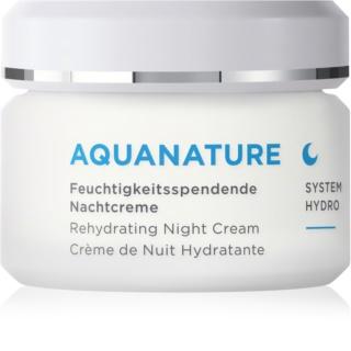 AnneMarie Börlind AquaNature System Hydro feuchtigkeitsspendende Nachtcreme