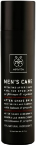 Apivita Men's Care Balsam & Propolis bálsamo after shave