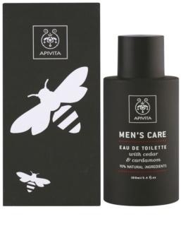Apivita Men's Care Cedar & Cardamom Eau de Toilette voor Mannen 100 ml