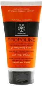 Apivita Holistic Hair Care Citrus & Honey Shine and Revitalizing Conditioner for All Hair Types