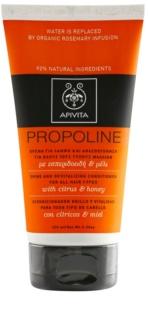 Apivita Holistic Hair Care Citrus & Honey Revitaliserende Conditioner  voor Alle Haartypen