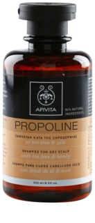 Apivita Holistic Hair Care Tea Tree & Honey Shampoo  voor Droge en Jeukende Hoofdhuid