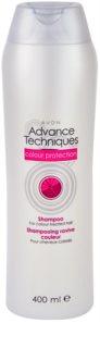 Avon Advance Techniques Colour Protection šampon za obojenu kosu