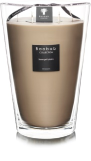 Baobab Serengeti Plains Scented Candle 35 cm