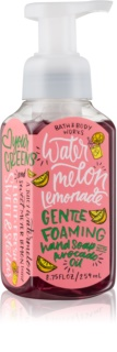 Bath & Body Works Watermelon Lemonade Foaming Hand Soap