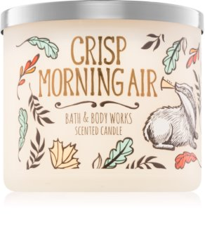Bath & Body Works Crisp Morning Air vela perfumado 411 g