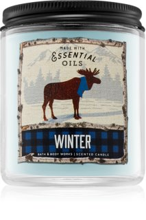 Bath & Body Works Winter vela perfumado 198 g I.