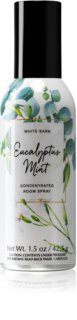 Bath & Body Works Eucalyptus Mint huisparfum I.