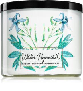 Bath & Body Works Water Hyacinth vela perfumada