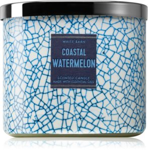 Bath & Body Works Coastal Watermelon vela perfumada