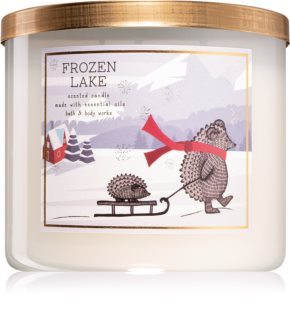 Bath & Body Works Frozen Lake geurkaars