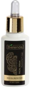 Bielenda Argan Face Oil PhytoCellTec Intensiv-Serum für die Erneuerung der Hautzellen