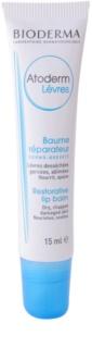 Bioderma Atoderm regenerierender Balsam für trockene Lippen