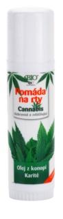 Bione Cosmetics Cannabis pomada do ust