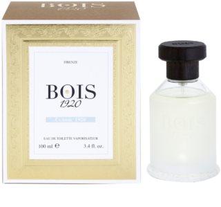 Bois 1920 Classic 1920 toaletní voda unisex 100 ml