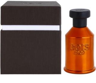 Bois 1920 Vento nel Vento Eau de Parfum Unisex 2 ml Sample