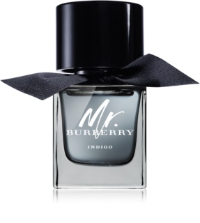 Burberry Mr. Burberry Indigo eau de toilette voor Mannen  50 ml