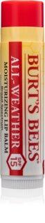 Burt's Bees Lip Care feuchtigkeitsspendender Balsam-Stick für die Lippen LSF 15