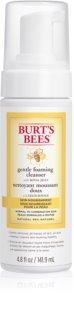 Burt's Bees Skin Nourishment озаряваща почистваща пяна за нормална към смесена кожа