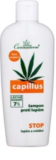 Cannaderm Capillus champú anticaspa