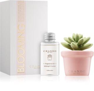 Chando Blooming Midnight Crystal aroma difusor com recarga 40 ml I.