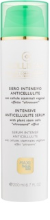 Collistar Special Perfect Body intensives, festigendes Serum gegen Zellulitis